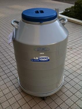 超大型 液体窒素保存容器