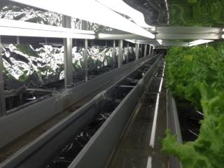 水耕栽培用炭酸ガス CO2
