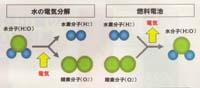 燃料2.jpg