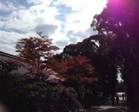 2012.11.03岩清水2.JPG
