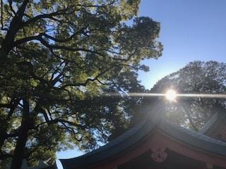 2018.1.1hikawa3.JPG